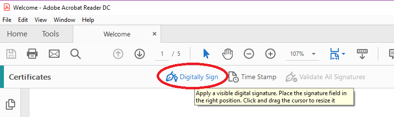 It Will Instruct You On How To Add The Signature Document By Clicking And Dragging Area Want